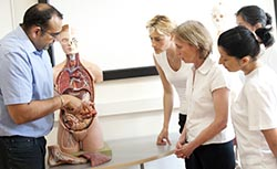 anatomy training is included with our massage course