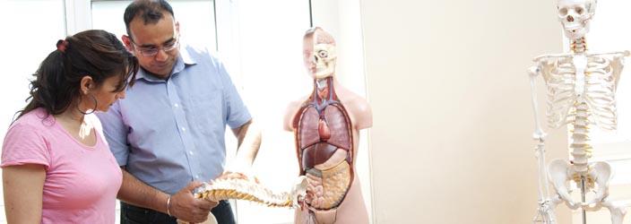 Anatomy Course Header