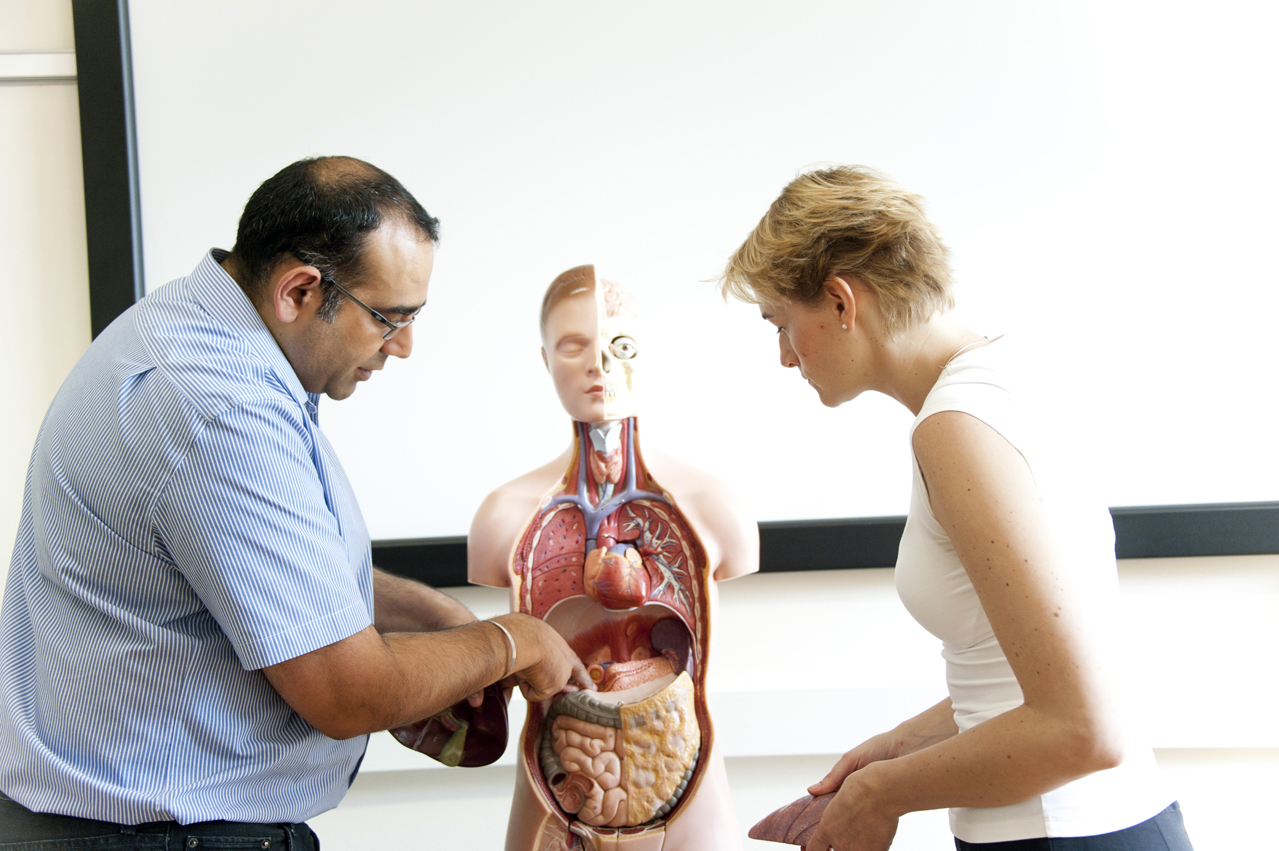 Anatomy & Physiology doesn\'t have to be the hard part of your ITEC ...